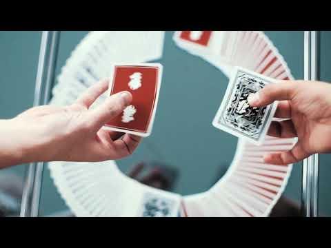 Baraja Leon video