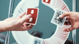 Video: Leon Playing Cards