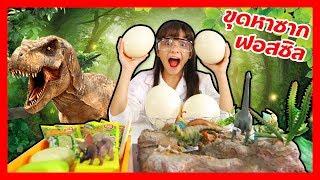 บรีแอนน่า | ขุดหาซากไดโนเสาร์ คลิปวิทยาศาสตร์สนุกๆ สำหรับเด็ก | Dinosaur Fossil Experiments