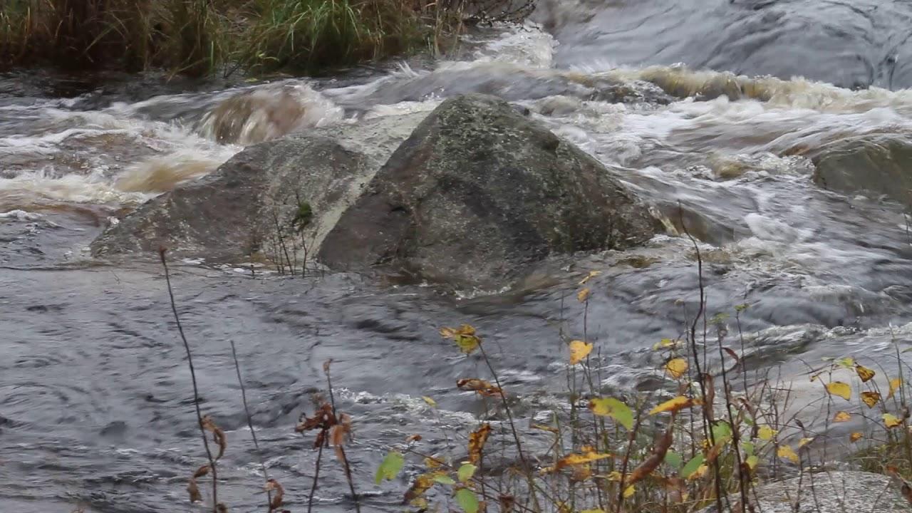 Sääjärvi