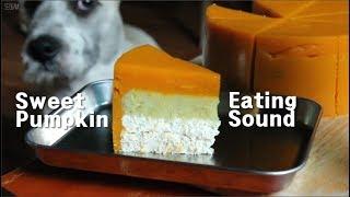 [Cooking ASMR] 강아지 단호박 케이크 만들기/For dogs Pumpkin cake/ 서담/ SEODAM