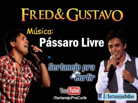 Fred e Gusttavo - Pássaro Livre (Lançamento TOP SERTANEJO 2013 - Oficial)