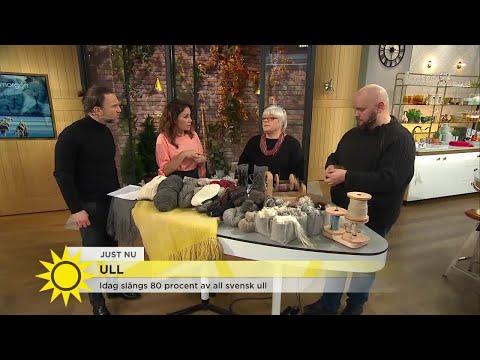 """Enorma mängder svensk ull slängs – """"Många får-ägare anser det inte lönsamt att bevara"""" - Nyhetsmorgo"""