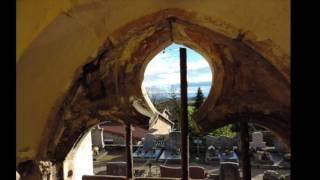 Ombre - Jaille Vitraux de l'église abbatiale de MOIFOND