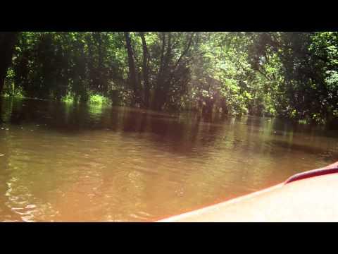 River Cruiser Kayaking