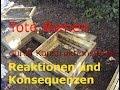 Tote Bienen wegen Beutefehler - Reaktion des Herstellers