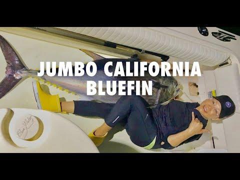 Đời sống câu cá ở Mỹ -  Jumbo Bluefin Tuna Southern California