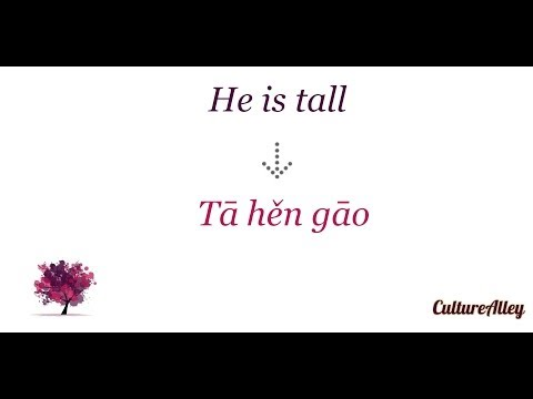 Basic Mandarin Chinese | Lesson 22 | Describing people Part I