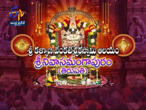 Sri Kalyana Venkateswara Swamy temple ,Tirumala - 11th June 2016 - తీర్థయాత్ర