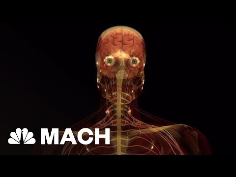 Scientists Stumble Upon New Organ We Never Knew We Had | Mach | NBC News