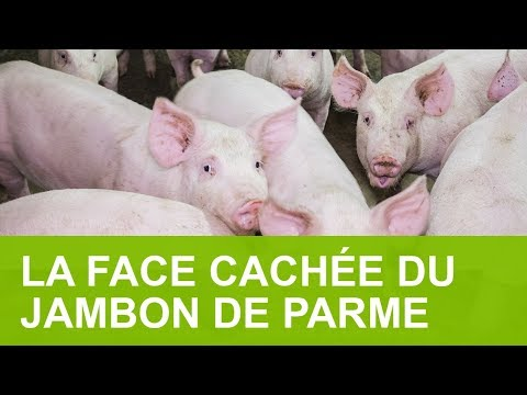 LA FACE CACHÉE DU JAMBON DE PARME