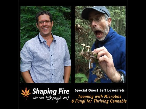 Shaping Fire Ep. 21 - Teaming with Microbes and Fungi for Thriving Cannabis with Jeff Lowenfels
