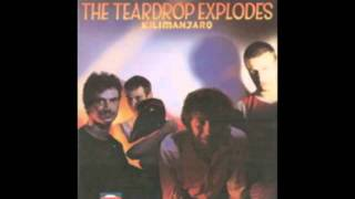 Watch Teardrop Explodes Brave Boys Keep Their Promises video