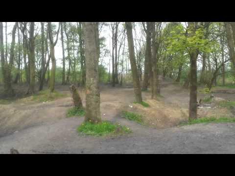 Codnor gate wood
