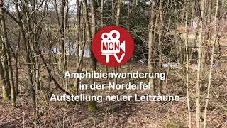 MON TV Aktuell - Amphibien-Zäune errichtet