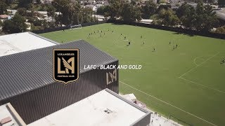Learning From Chicago, Playoff Push, Rossi's Evolution | LAFC: Black & Gold