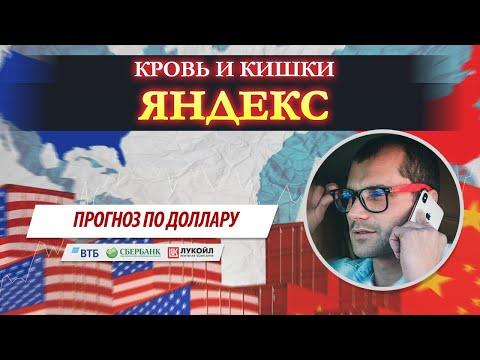 Шухер в Яндексе.