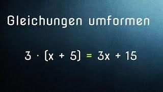 Mathe G24: Terme und Gleichungen umformen - Ausmultiplizieren (Distributivgesetz)