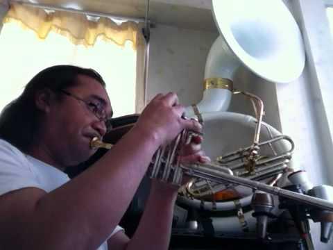 Flowerdale - John Campo piccolo trumpet