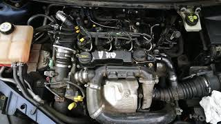 Engine noise Ford Focus 1.6 TDCI
