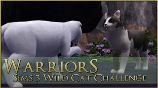 Guiding the Moon || Warrior Cats Sims 3 Legacy - Episode #56