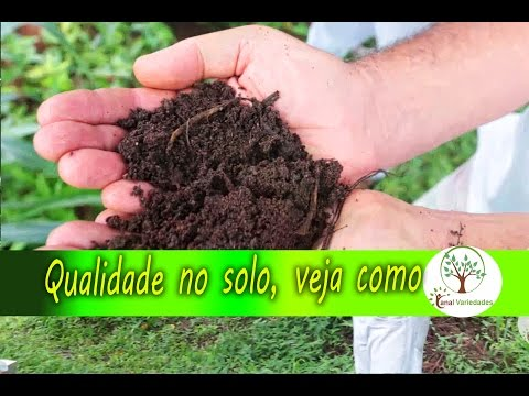 Fertilizer and soil quality only with the correct management of land , see how , quality of lifeиз YouTube · Длительность: 9 мин5 с