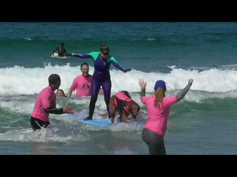 Surf Dog Ricochet's Waves of Empowerment Program