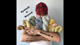 Dyebath and Beyond: Episode 6