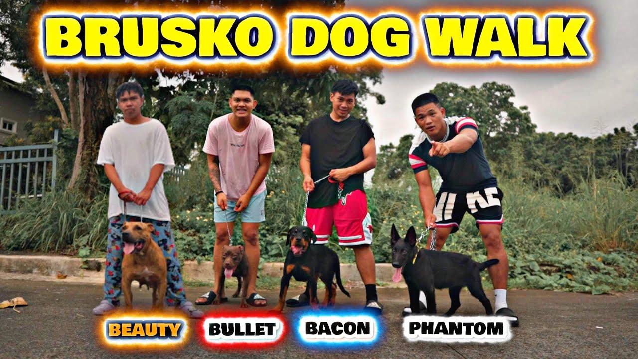 DOG WALK (BruskoBros)