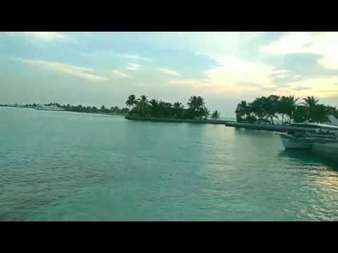Paradise iceland resort