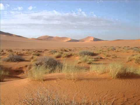 Desert sound - Sound effect