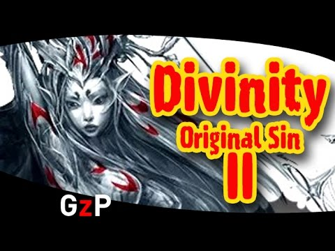 divinity original sin 2 how to play coop