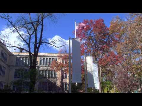 M.S. 342 International School for Liberal Arts