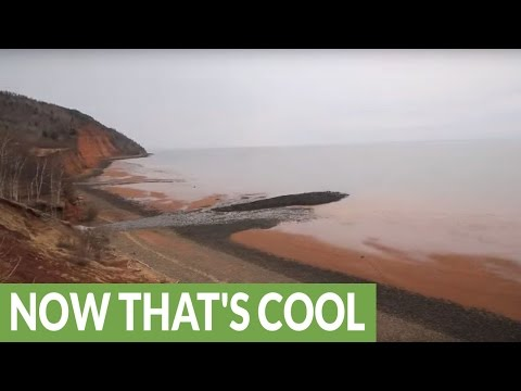 Time Lapse Shows Dramatic Bay Of Fundy Tide Change In Only 5 Hours