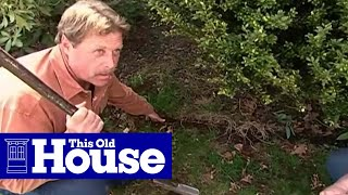 How To Edge A Garden Bed - This Old House