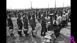 Служебные романы немецких военнопленных с советскими женщинами.
