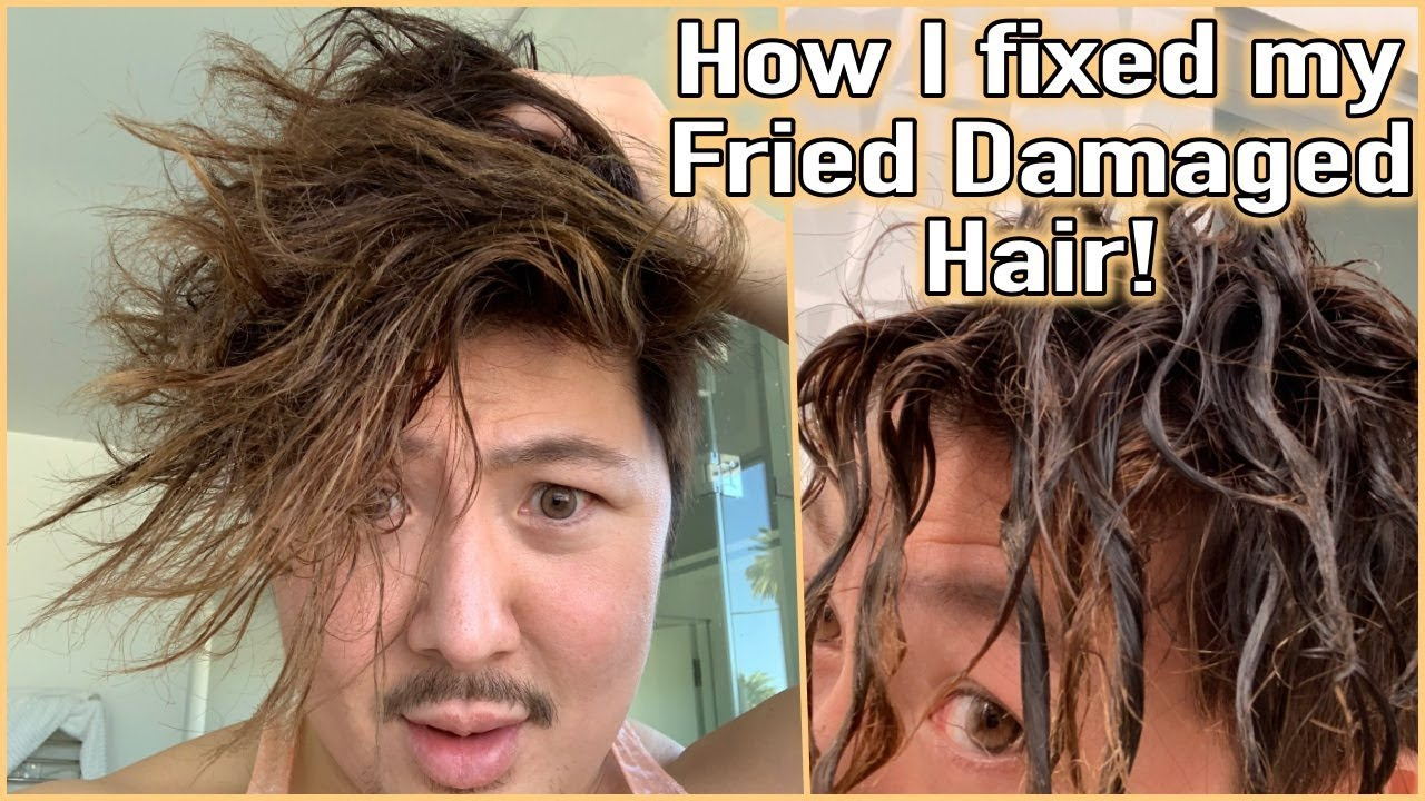 How I Fixed my Fried Damaged Hair!