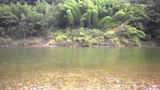 このロケ地は島根県江津市の江の川にて撮影しました。唄は撮影者本人で...