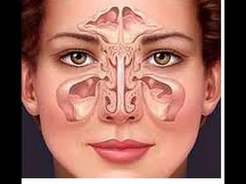 Masaje facial para la sinusitis. Facial massage for sinusitis. ECODAISY