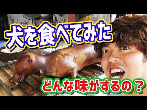閲覧注意ベトナムで犬の肉を食べてみたI ate dog meat