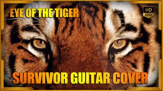Eye Of The Tiger - Survivor guitar cover by Anubys