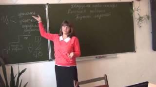 Урок русского языка, 7 класс Сташевская А А
