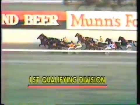 1984 Interdomions - Pacers' 1st Heat, Globe Derby Park, Adelaide: Gap Road