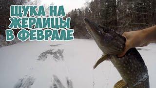 Зимняя рыбалка 2020 Щука на жерлицы Первый лед в феврале