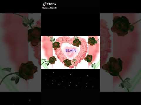 Elvin adina video