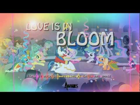 Aviators - Love is in Bloom Remix (Feat. Yelling At Cats and Hmage)