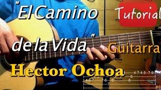 El Camino de la Vida - Hector Ochoa tutorial