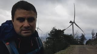 Mahmut Zirve
