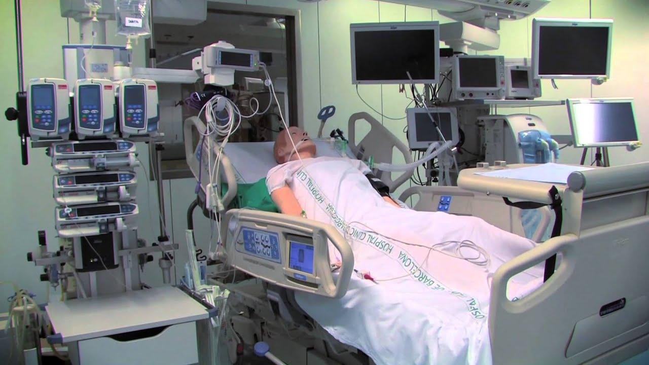 the ventilated patient in icu