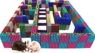 DIY - Build Amazing Maze Labyrinth For Hamster Pet With Magnetic Balls (Satisfying)